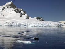 天堂海湾-南极洲 免版税库存图片