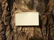 σημείωση Στοκ φωτογραφίες με δικαίωμα ελεύθερης χρήσης