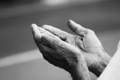 вручает молитву Стоковое Фото