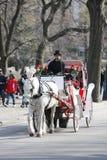 支架中央公园乘驾 免版税库存照片