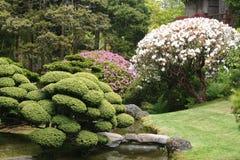 японский ландшафт Стоковые Изображения