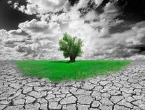 概念环境 免版税图库摄影