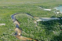 热带的海岸 库存图片