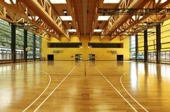 体操内部公立学校 库存照片