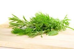 свежие травы Стоковое фото RF