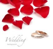 婚戒和玫瑰 免版税库存照片