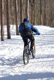 骑自行车的人雪 免版税库存图片