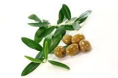 оливки Стоковые Изображения RF
