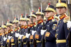 воины армии Стоковые Фотографии RF