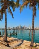 街市迈阿密地平线 免版税库存照片