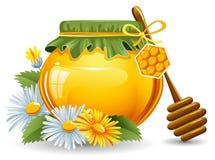 мед Стоковое Изображение