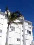 热带别墅 库存图片
