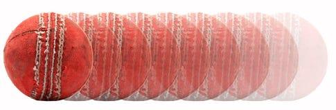 сверчок шарика Стоковое Изображение RF