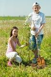 种植结构树的男孩女孩 免版税库存照片