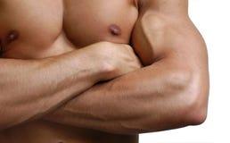 男性肌肉躯干 免版税库存照片