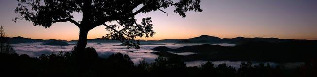 发烟性黎明有雾的极大的山 免版税库存照片