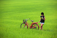 美好的自行车书女孩稻读取 免版税库存照片