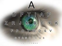зрение глаза диаграммы Стоковые Фотографии RF