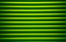 текстура ладони листьев Стоковая Фотография RF