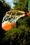 корзина шарика Стоковое Изображение RF