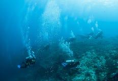 潜水员组 免版税库存照片