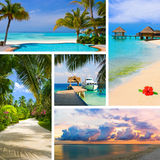 海滩拼贴画图象马尔代夫夏天 免版税库存照片