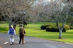 耦合年长的人走 免版税图库摄影