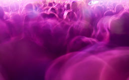 Толпа в нерезкости Стоковые Фото
