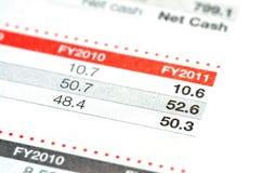 финансовый отчет Стоковая Фотография RF