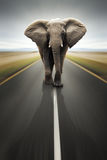 概念性责任大量公路运输旅行 图库摄影