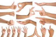 Жесты руки женщины Стоковые Фотографии RF