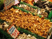 新鲜的蘑菇 免版税图库摄影