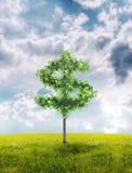 货币结构树 免版税库存图片