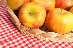 μήλα Στοκ εικόνες με δικαίωμα ελεύθερης χρήσης