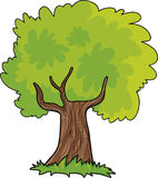 δέντρο κινούμενων σχεδίων Στοκ φωτογραφία με δικαίωμα ελεύθερης χρήσης