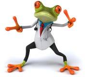 医生青蛙 免版税库存照片