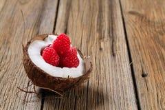椰子莓 库存图片