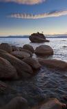 盆景岩石结构树 图库摄影