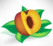 新鲜的叶子桃子 库存照片