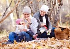 Семья в парке Стоковые Изображения