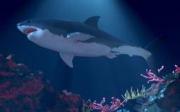 巨大鲨鱼白色 免版税图库摄影