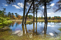 Место реки Стоковое фото RF