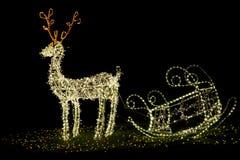 圣诞节驯鹿 免版税库存图片