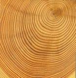 削减木的纹理 图库摄影