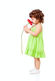 студия запахов девушки цветка африканской маргаритки маленькая Стоковая Фотография RF
