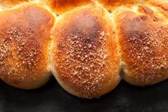 自创的小圆面包 库存图片