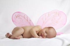 有桃红色天使的婴孩在空白背景飞过 库存照片
