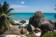热带的岸 免版税库存图片