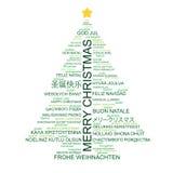 圣诞节形状的结构树类型 免版税库存照片