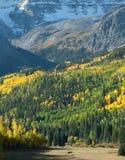 гора лужка Стоковая Фотография
